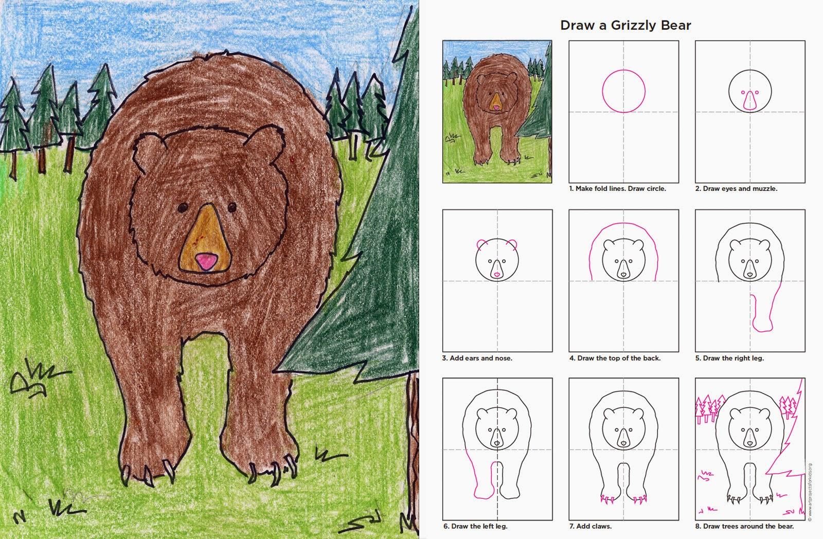 http://1.bp.blogspot.com/-t2YFry4_JBU/U2nOVg0hBsI/AAAAAAAATcU/5MoWYf1b7NM/s1600/Grizzly+Bear+diagrams.jpg