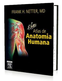 Atlas anatomia prometheus download