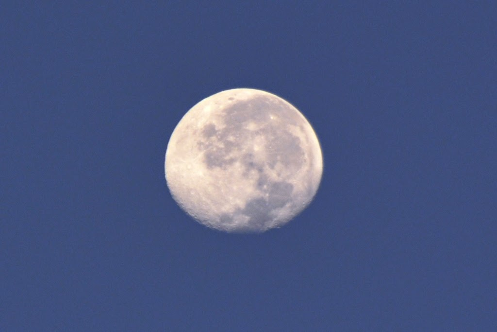 Geoglyphs Arica Moon