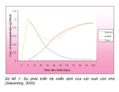 Sự phát triển hệ miễn dịch của vật nuôi còn nhỏ.