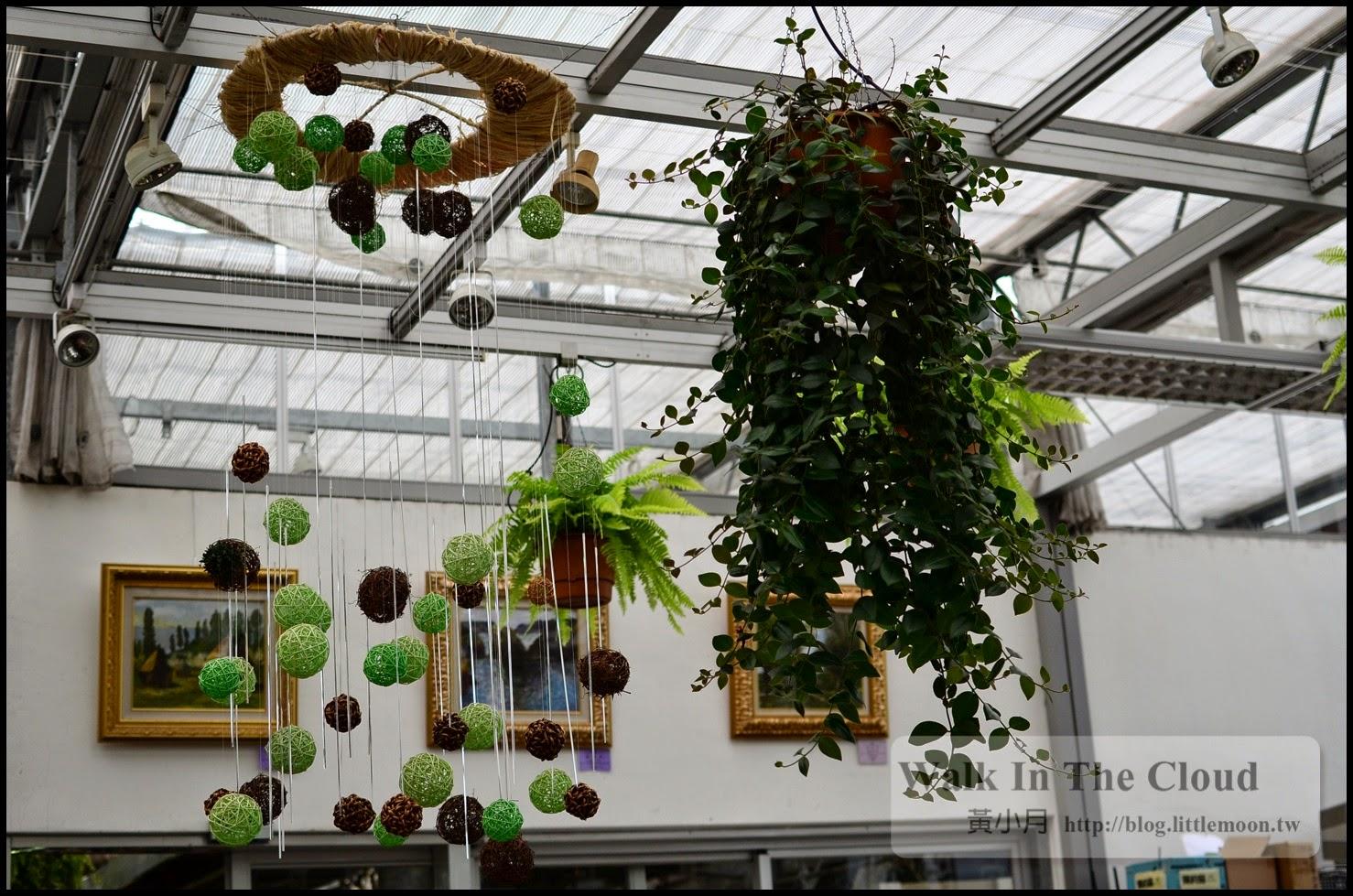 室內區的造型盆栽