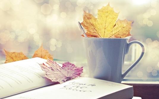 Lo mejor de la semana dividendo 43-2012