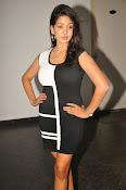 Pavani Reddy Glamorosu Photo shoot-thumbnail-8