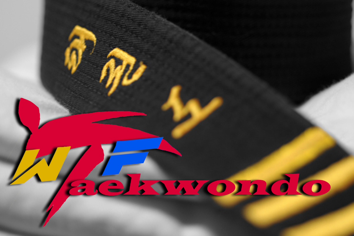 http://1.bp.blogspot.com/-t41Q-1Y6rYc/TrSKQBarZiI/AAAAAAAAAxE/VON-jMMTYAI/s1600/Taekwondo_WTF_wallpaper.jpg