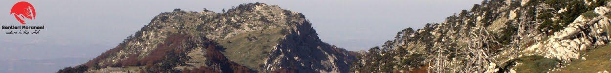 Serra di Crispo dalla Serretta della Porticella