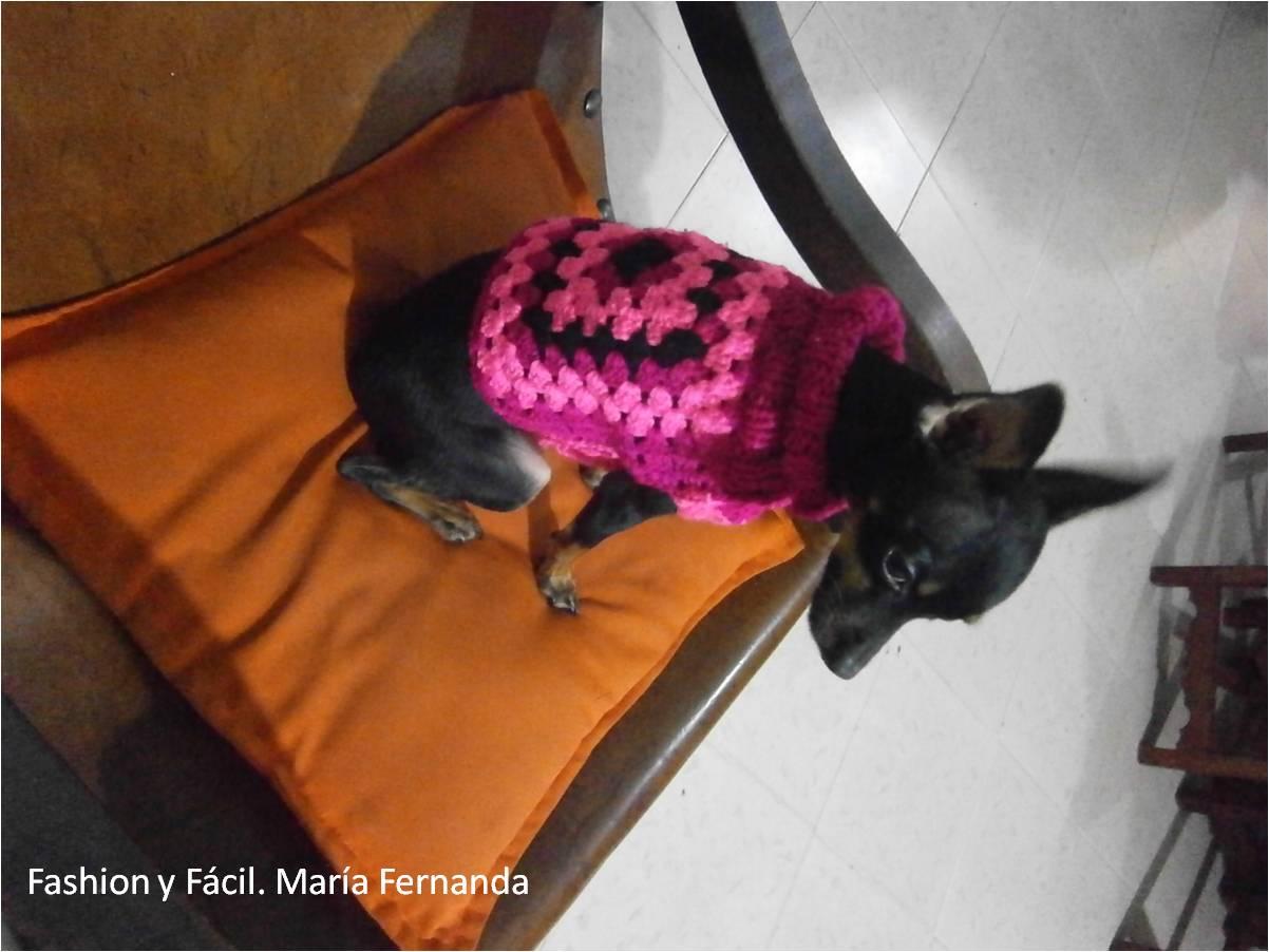Moderno Tejer Suéter Modelo Del Perro Elaboración - Manta de Tejer ...