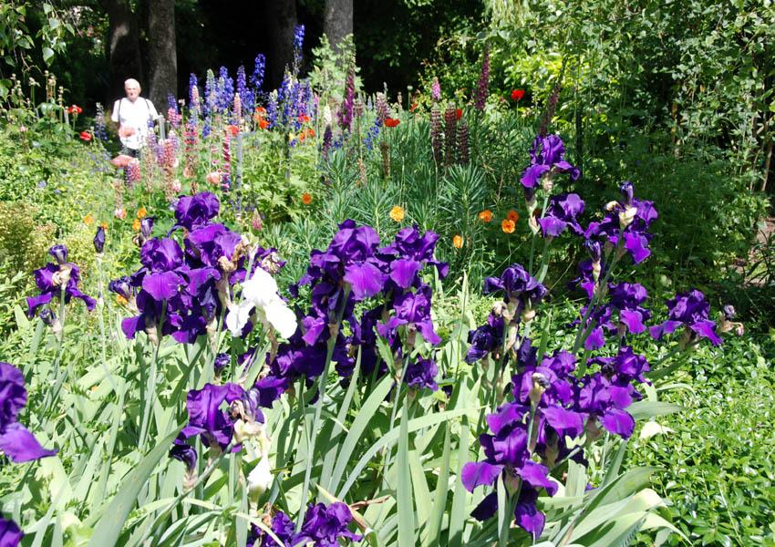 R alisations manuelles de v ro jardin fleuri for Jardin fleuri lyon 9