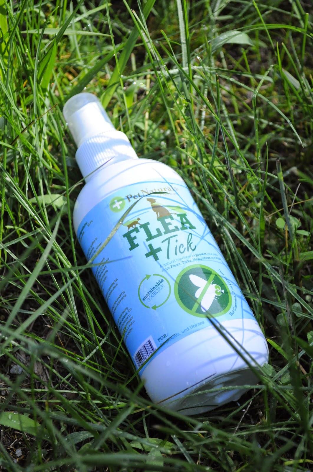 Pet Naturals of Vermont Flea+Tick product