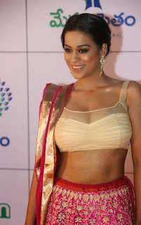 Actress Mumaith Khan  Picture Gallery in Half Saree at Memu Saitam Dinner with Stars Red Carpet  7.jpg