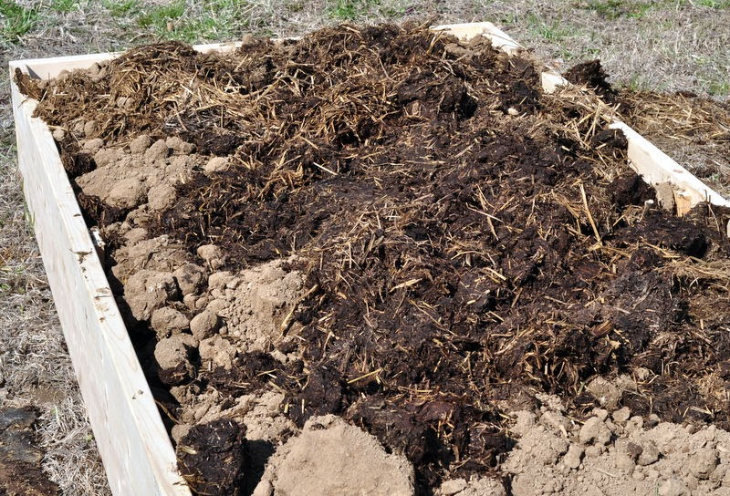 family of farmers gardening how to prep your soil with farm fresh fertilizer