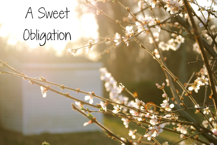 ...A Sweet Obligation...