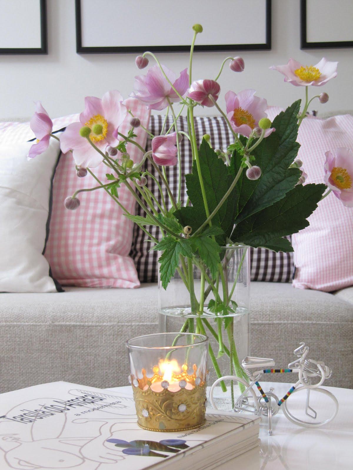 meu jardim rosas e mimos:Minha casa, meu castelo: Flores de meu pequeno jardim