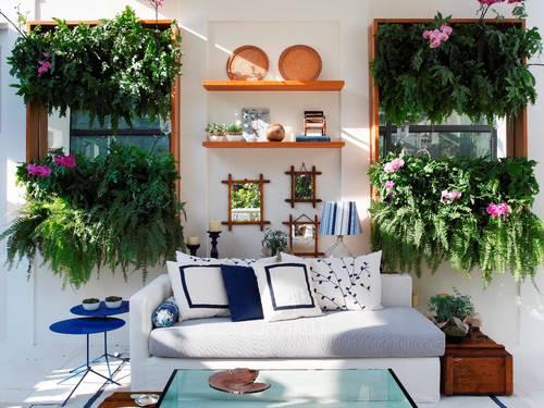 decoração  plantas  samambaias