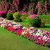Διαγωνισμός για τον καλύτερο κήπο και το πιο πράσινο μπαλκόνι στα Χανιά!