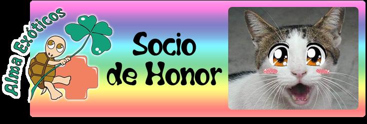 Socio de Honor