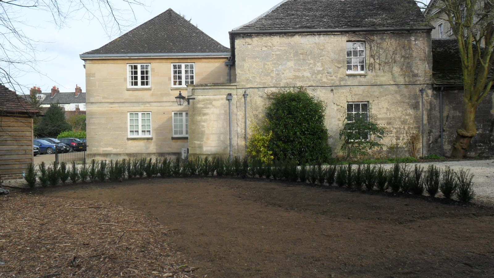Worcester College Gardeners A New Yew Hedge