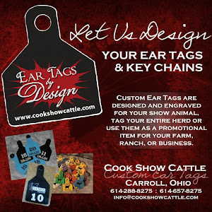 Ear Tags by Design