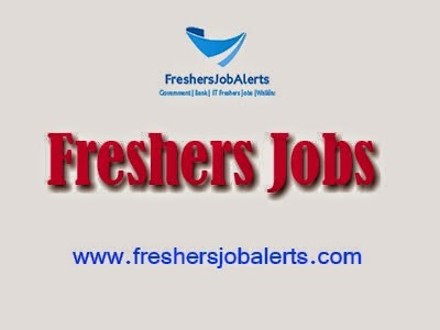 Find Here Fresher & Experience Jobs