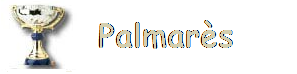 Logo palmares