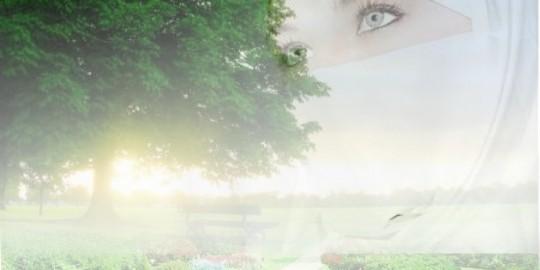 Nasehat Untuk Bidadari Dari Surga