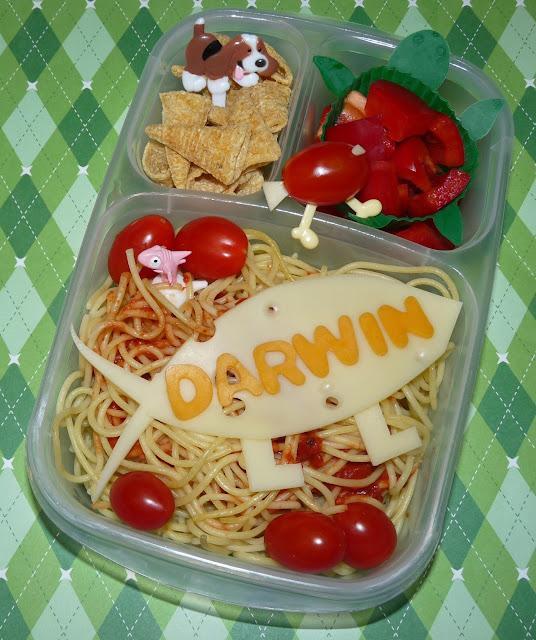 Darwin Day Easylunchboxes Bento