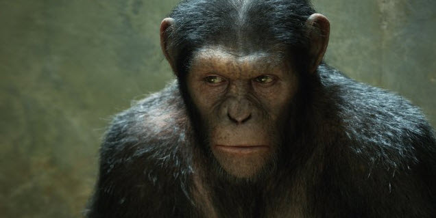 Zrození planety opic (Rise Of The Planet Of Apes) 2011