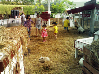 Kebun Binatang Mini Bali Zoo Pantai Kuta