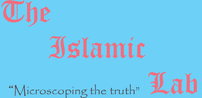 Islamic Lab