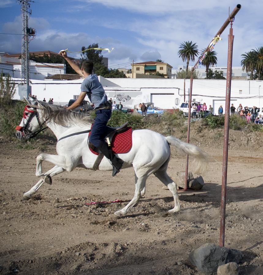 En Tenerife se mantienen las carreras de sortijas en diversas localidades del norte. Estas carreras son organizadas en torno a la fiesta.