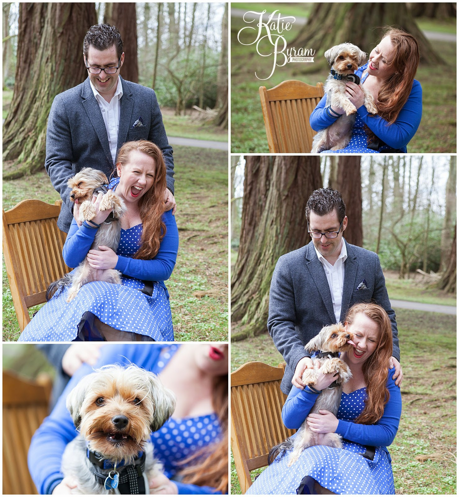 yorkshire terrier, dog at wedding, disney up engagement shoot, minsteracres wedding, lord crewe arms blanchland, northumberland wedding, quirky wedding photography, disney wedding, dogs at wedding