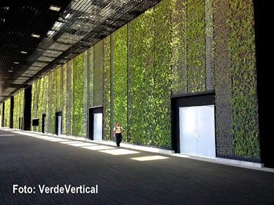 Por los cabos verde vertical los creadores de las for Muros verdes en mexico