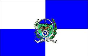 Rio de Janeiro's State flag