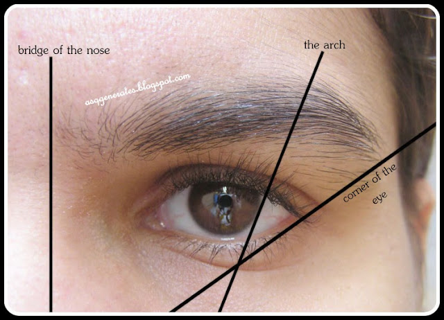 Groom Eyebrows description