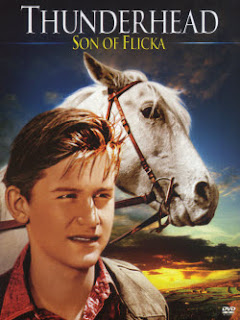 Thunderhead son of Flicka (1945)