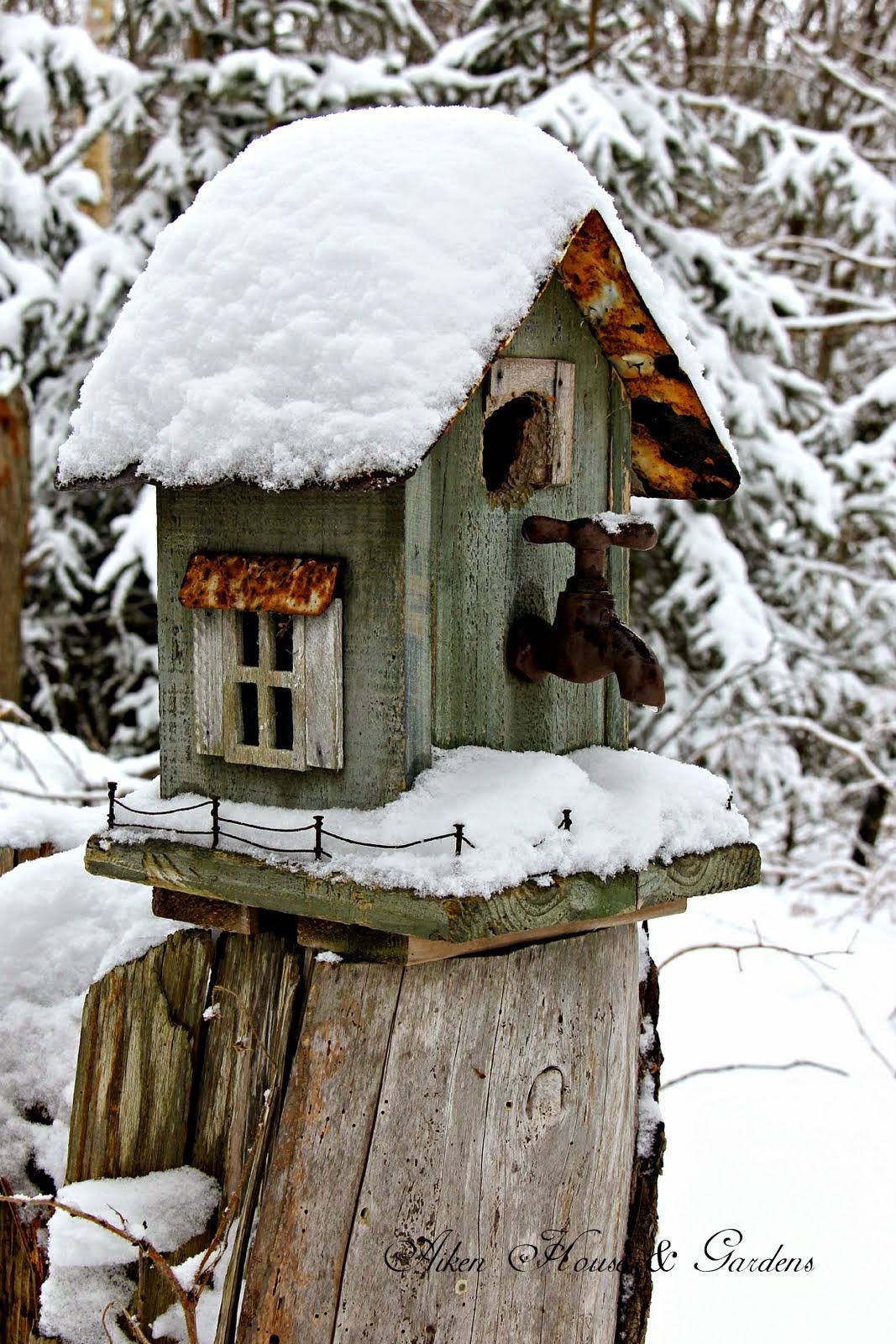 Aiken house gardens our winter garden for Aiken house