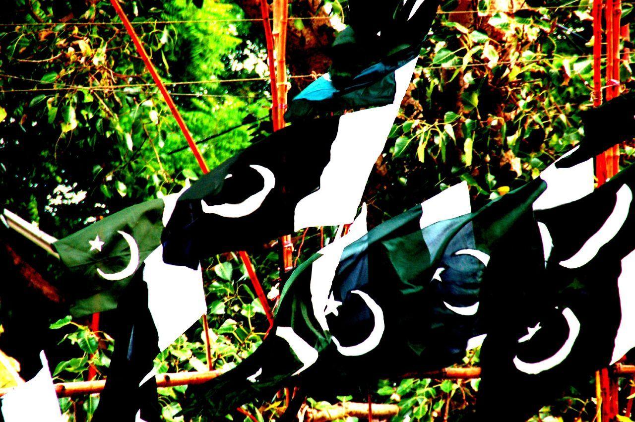 Pakistan Flag Wallpaper 100042