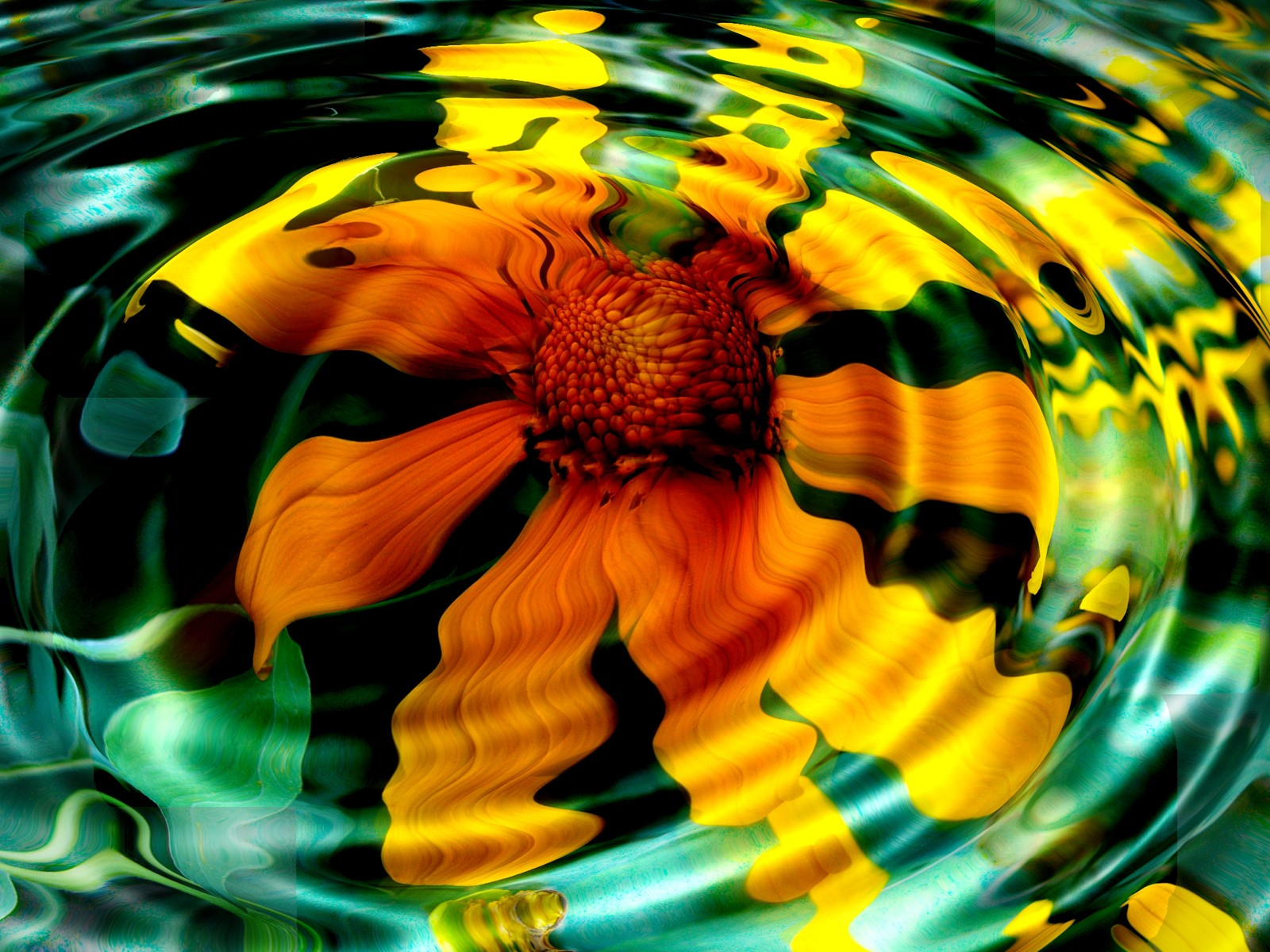 http://1.bp.blogspot.com/-tACwi5p2dVk/TqwDkYbKgBI/AAAAAAAADkk/lIRLjwXrux4/s1600/flower_reflection_desktop_wallpaper_49965.jpg