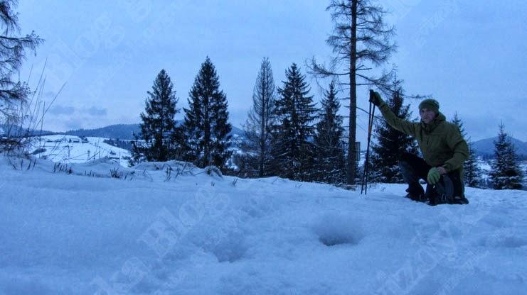 Мандрівка на гору Ільза, Славське: На підйомі на хребет. За мною видніється Славське.