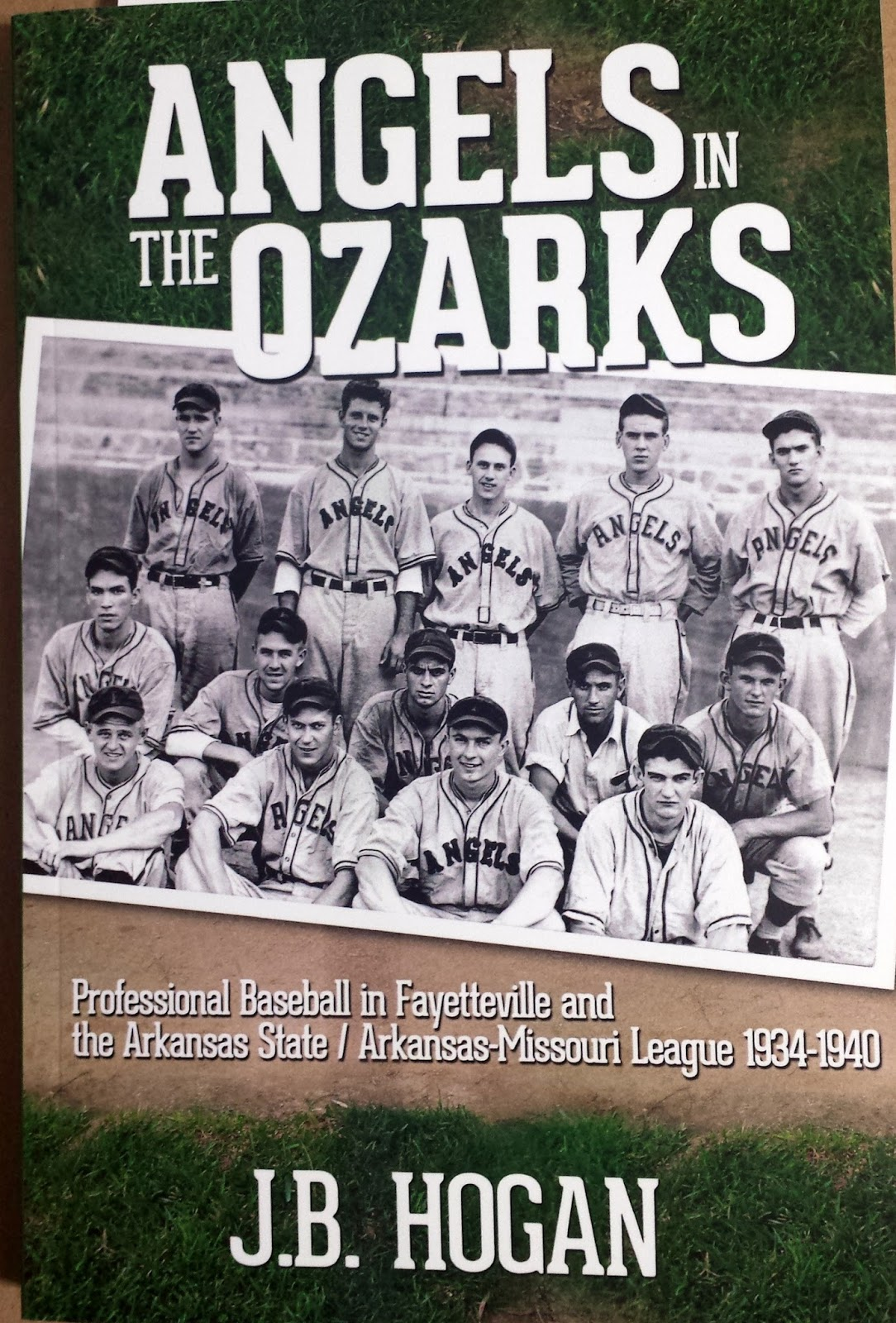 Have you read baseball books off the beaten path of the mainstream target audience?