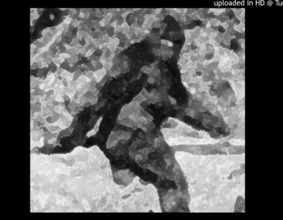 Massachusetts Bigfoot Interview