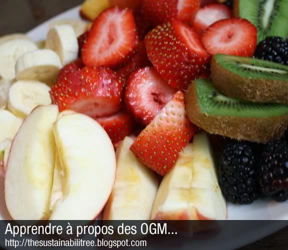 A plate of common fruits that might contain GMOs