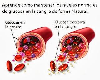 Como Normalizar la Glucosa en la Sangra Natural
