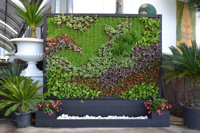 Jardines verticales for Plantas utilizadas en jardines verticales
