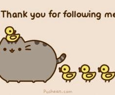 Thank you to my blog followers new and old