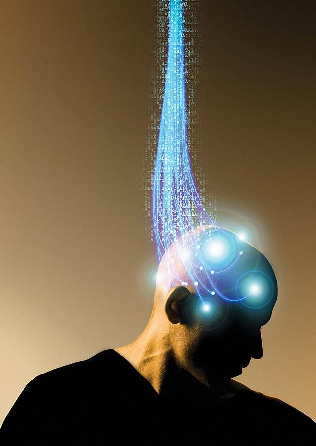 cervello, computer
