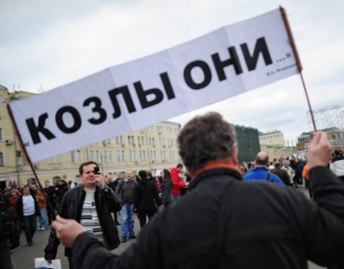 В России появится партия дураков?