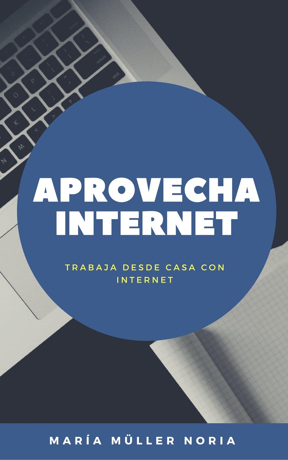 E-Book Aprovecha Internet