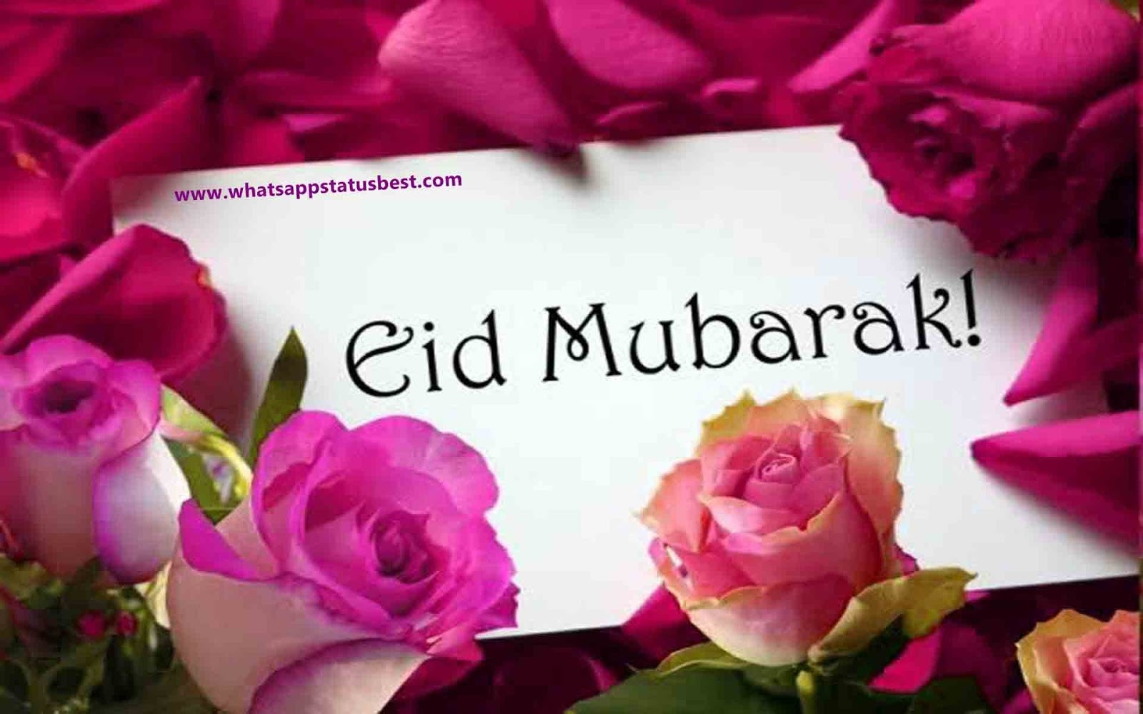 Happy Bakrid Pictures Free Download : Best Wallpapers Facebook and ...