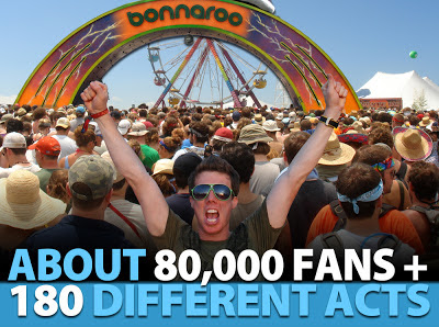 Bonnaroo Chris Infographic 2013 header