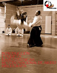 Manual de Aikido